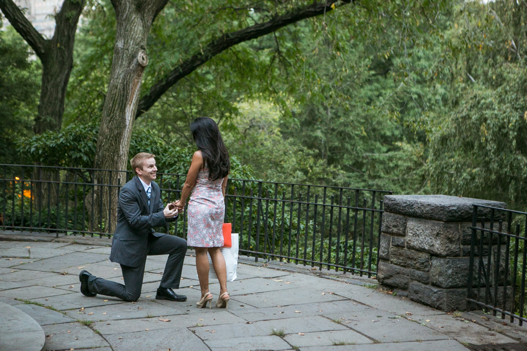 [Belvedere Castle Proposal]– photo[2]