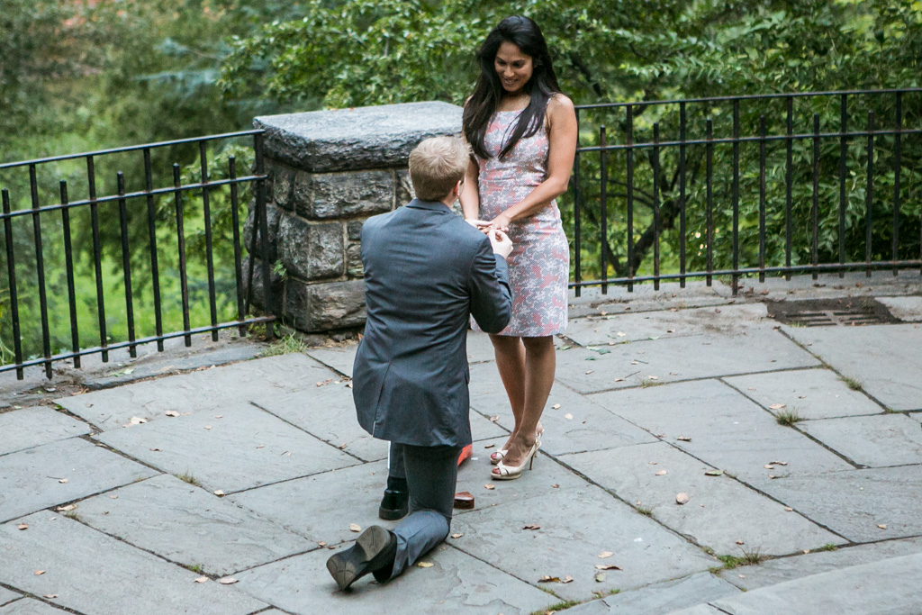 [Belvedere Castle Proposal]– photo[1]
