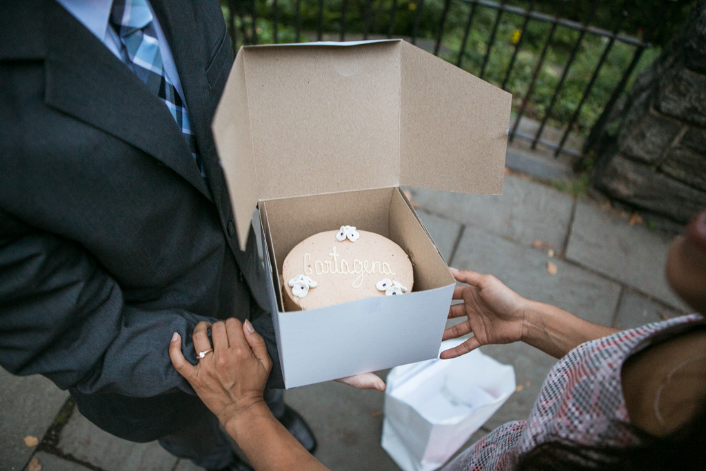 [Belvedere Castle Proposal]– photo[5]