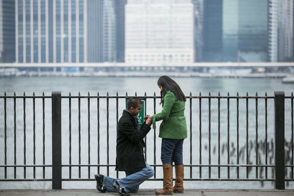 Photo 3 Brooklyn Heights Promenade Proposal | VladLeto