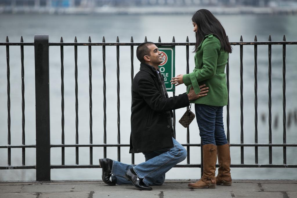 Photo 4 Brooklyn Heights Promenade Proposal | VladLeto