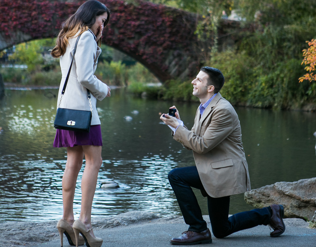 [ Proposal at the Gapstow Bridge in Central Park]– photo[1]