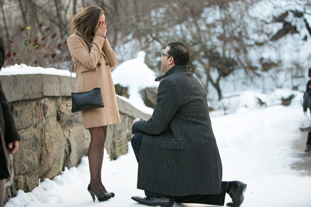 Photo Valentine's Day Proposal at the Gapstow Bridge in Central Park | VladLeto