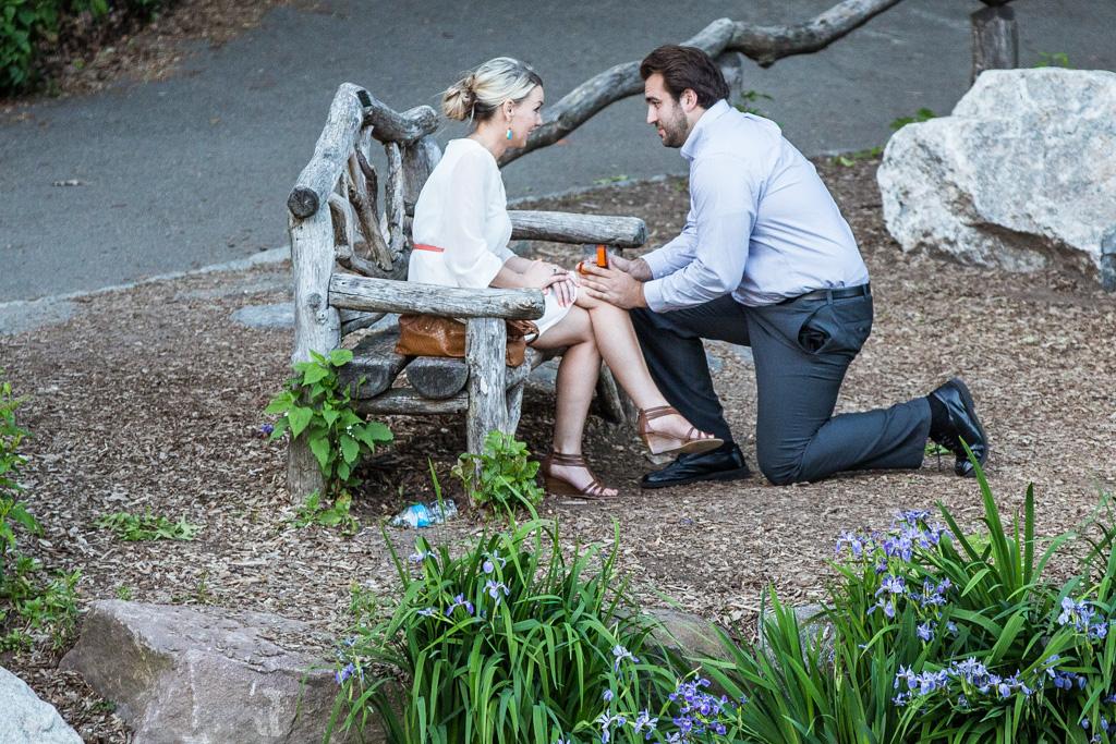 [ Central Park's Bow Bridge Proposal ]– photo[1]