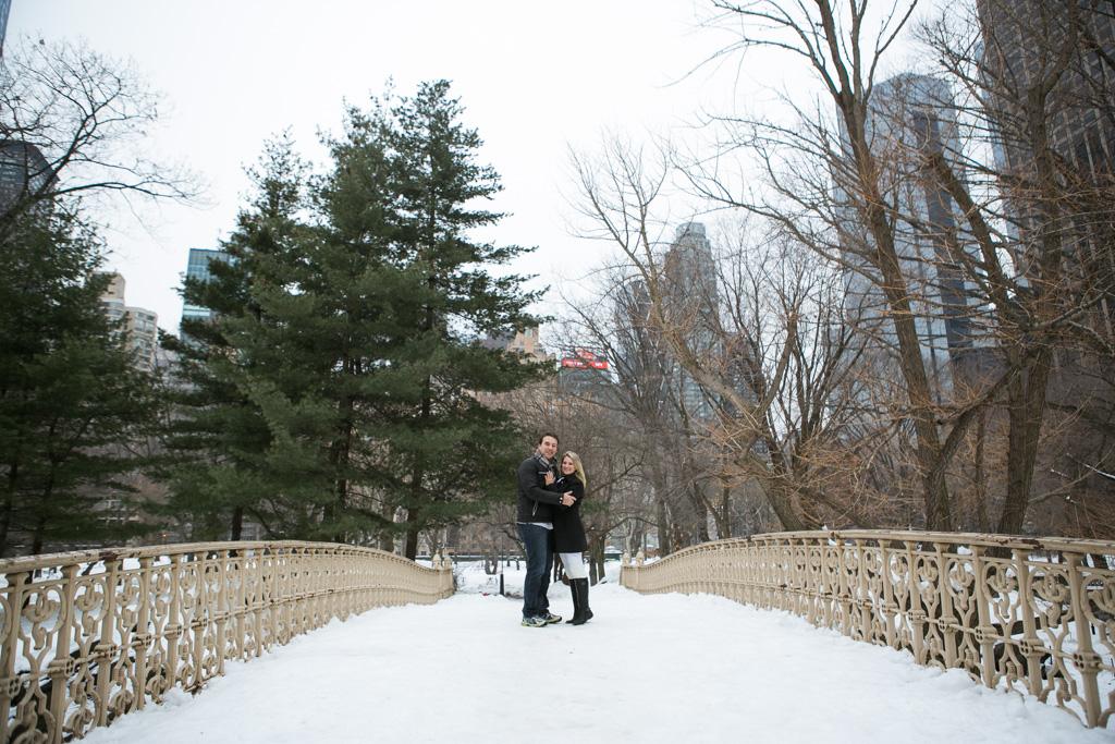 [Central Park - Pine Bank Bridge Proposal]– photo[1]