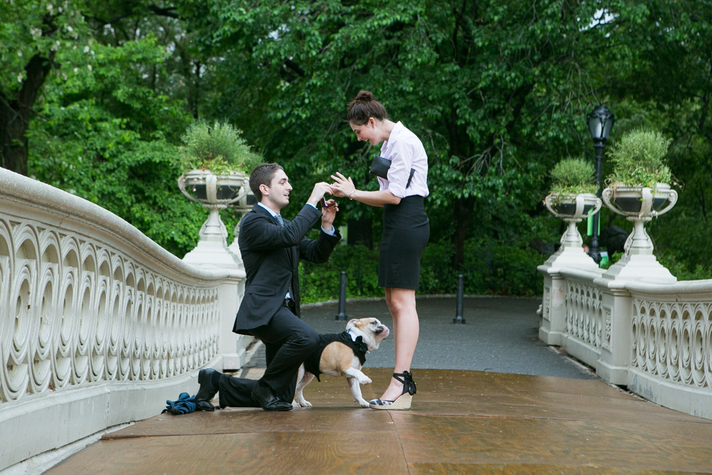Photo 2 Bow Bridge Wedding Proposal | VladLeto
