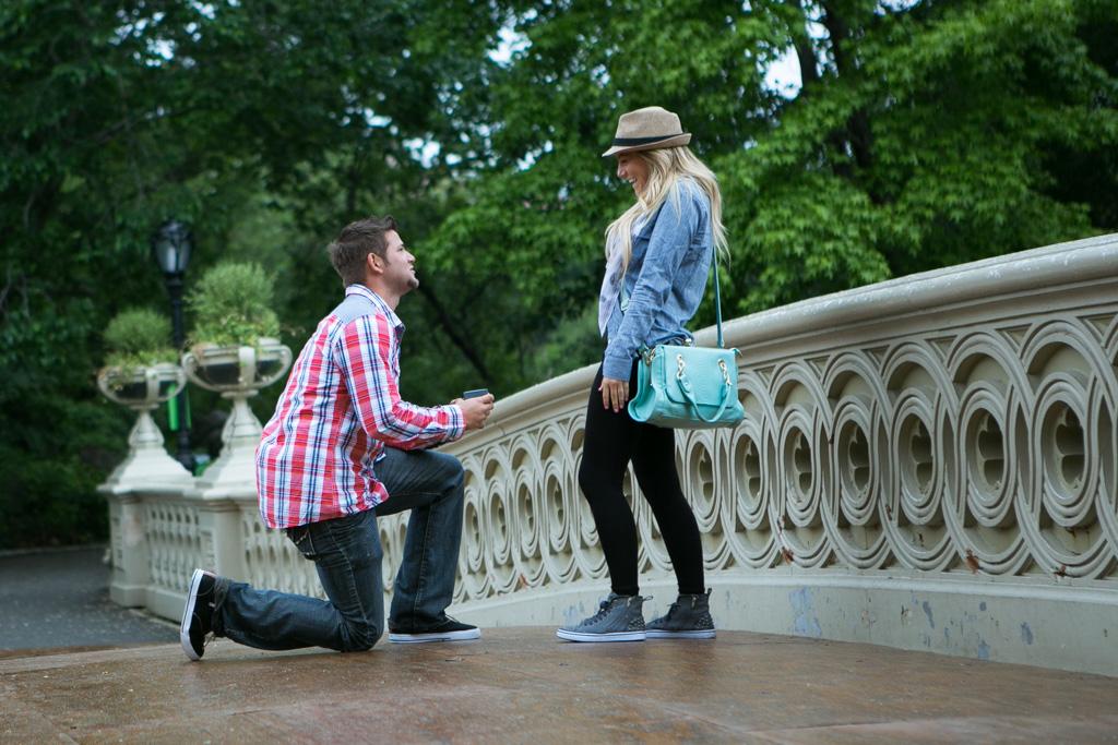 [Bow Bridge Central Park Proposal ]– photo[1]