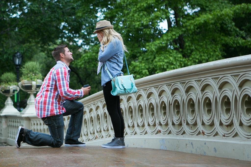[Bow Bridge Central Park Proposal ]– photo[2]