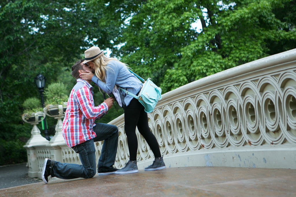 [Bow Bridge Central Park Proposal ]– photo[3]