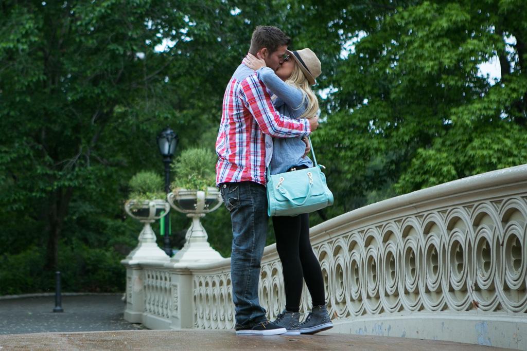 [Bow Bridge Central Park Proposal ]– photo[4]