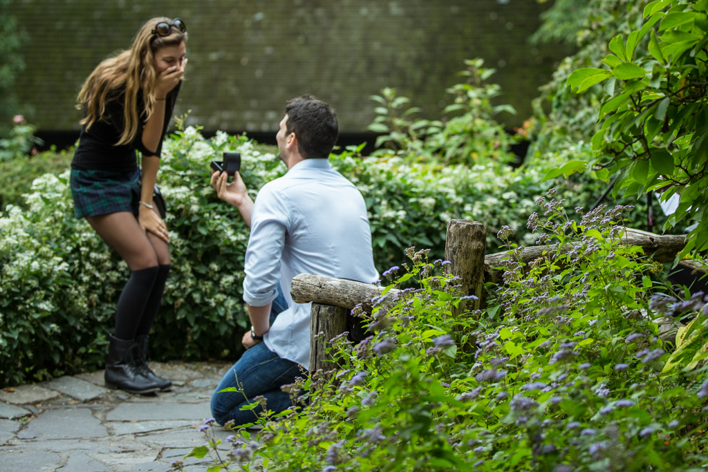 Proposal in Shakespeare Garden at Central Park]– photo[3]