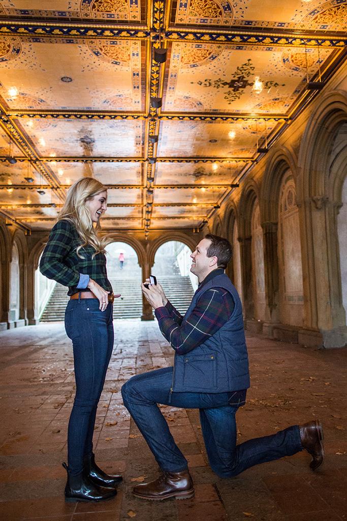 [Central Park Bethesda Terrace Proposal]– photo[1]