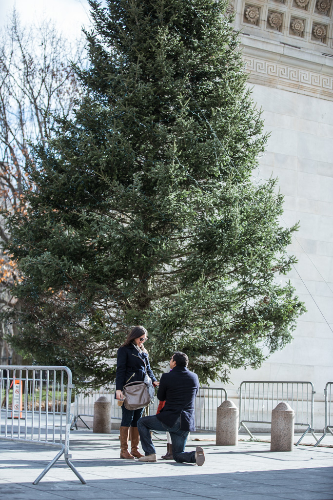 Photo 5 Secret Proposal at Washington square park | VladLeto
