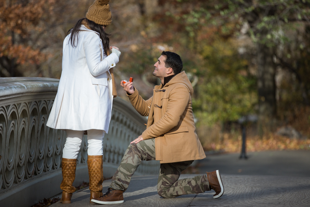 Photo 12 Holiday Season is the most popular time to propose in NYC | VladLeto
