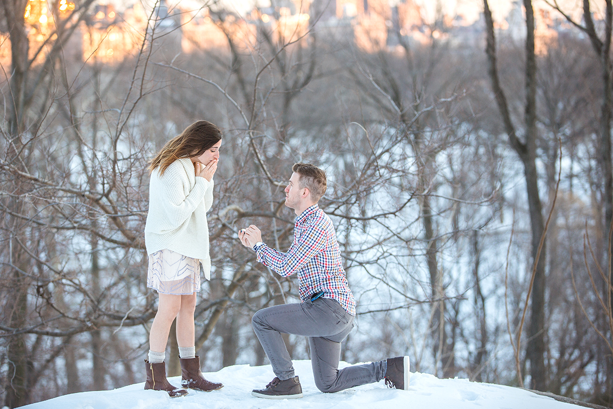 Photo 7 Surprise Proposal in Central Park near West 100th street | VladLeto