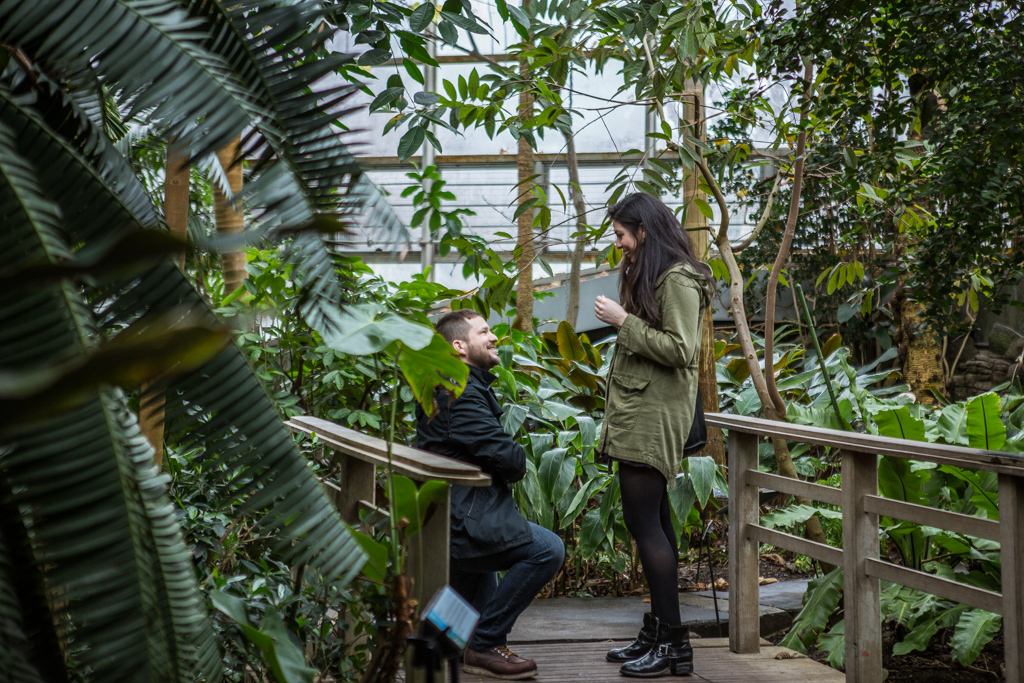 Photo Wedding Proposal in Brooklyn botanical garden | VladLeto