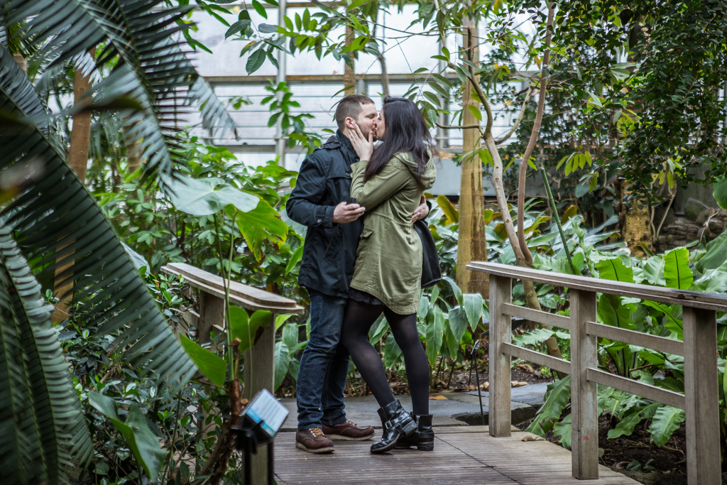 Wedding Proposal in Brooklyn botanical garden VladLeto