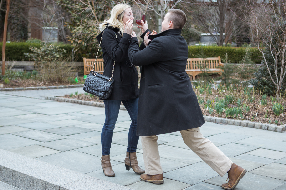 Photo 3 Marriage Proposal in Central Park Zoo | VladLeto