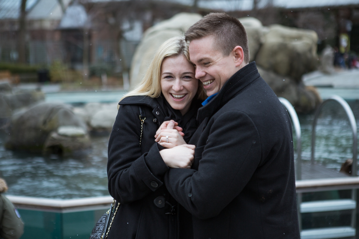 Photo 8 Marriage Proposal in Central Park Zoo | VladLeto