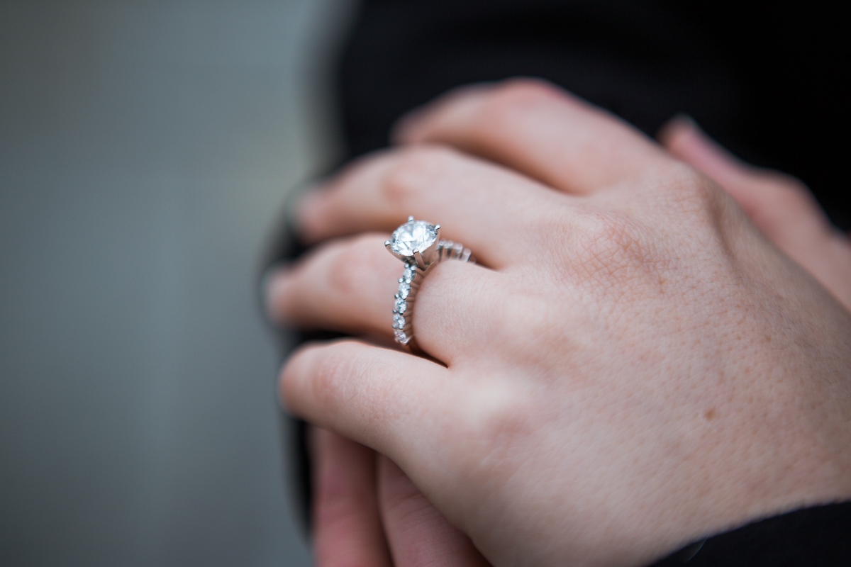 Photo 11 Marriage Proposal in Central Park Zoo | VladLeto