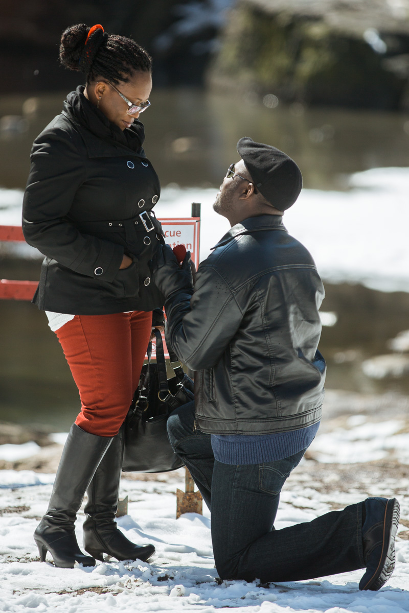 Photo 2 Surprise Proposal by Gapstow Bridge | VladLeto