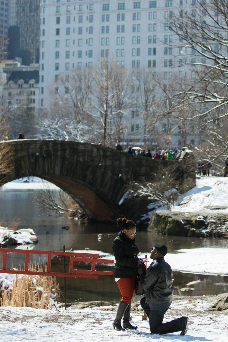 Photo 2 Surprise Proposal by Gapstow Bridge | VladLeto