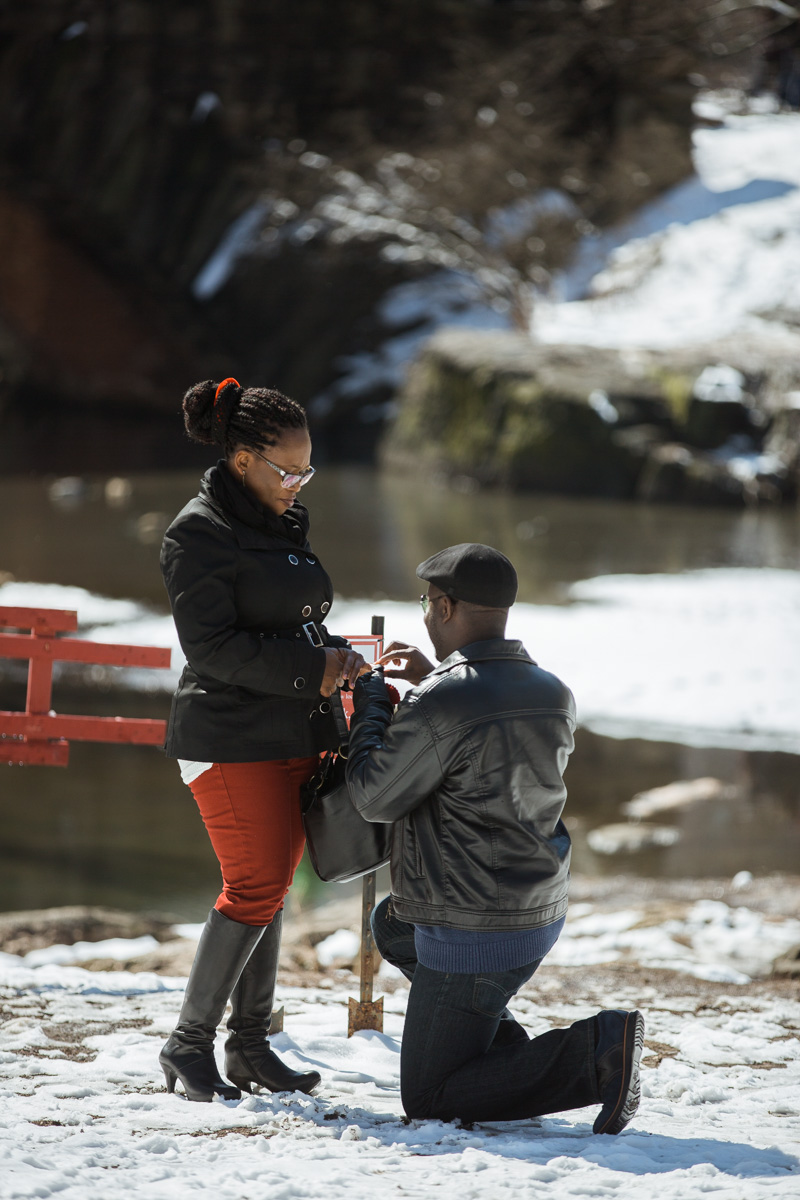 Photo 4 Surprise Proposal by Gapstow Bridge | VladLeto