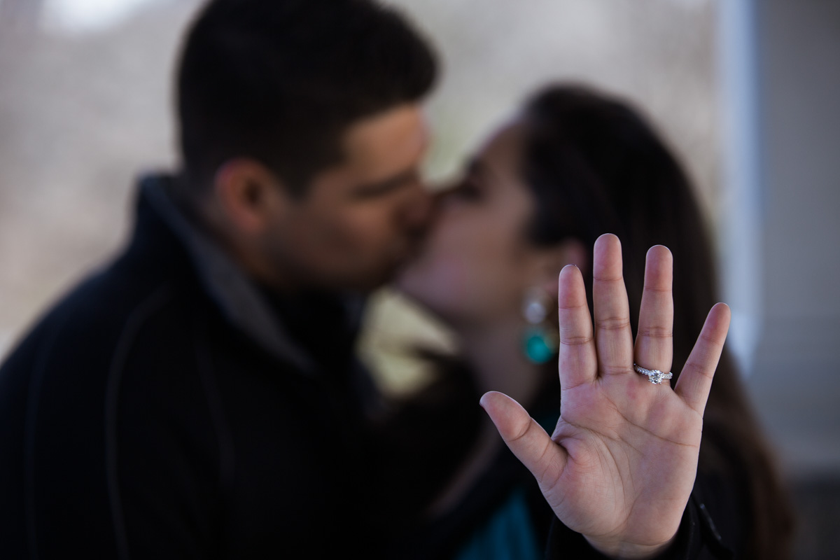 [Secret proposal in Central Park by Belvedere Castle]– photo[7]