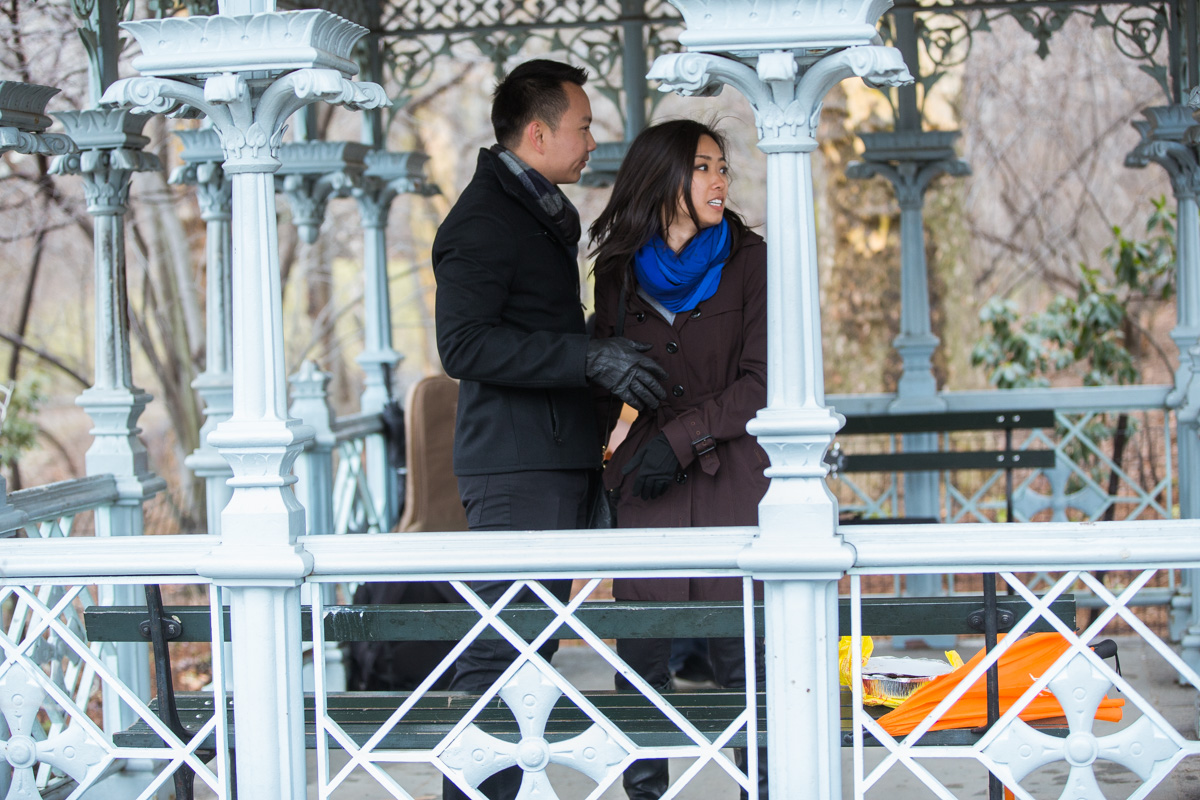 Photo 3 Surprise Proposal at Ladies Pavilion in Central Park | VladLeto