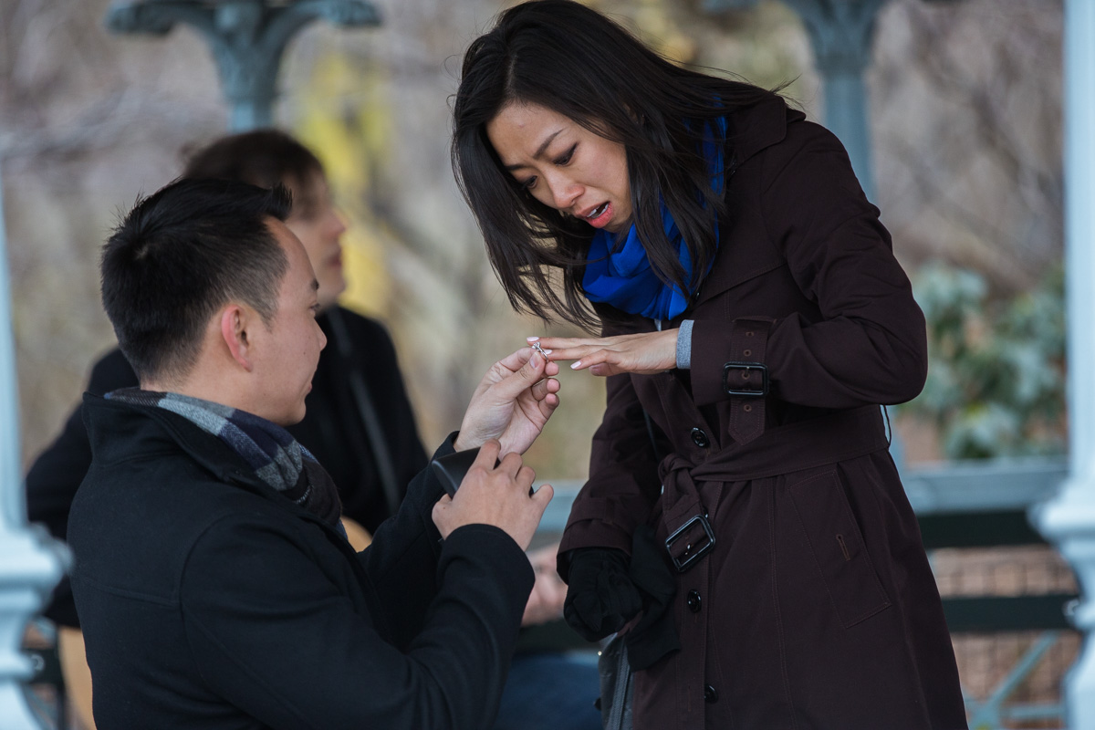 Photo 6 Surprise Proposal at Ladies Pavilion in Central Park | VladLeto