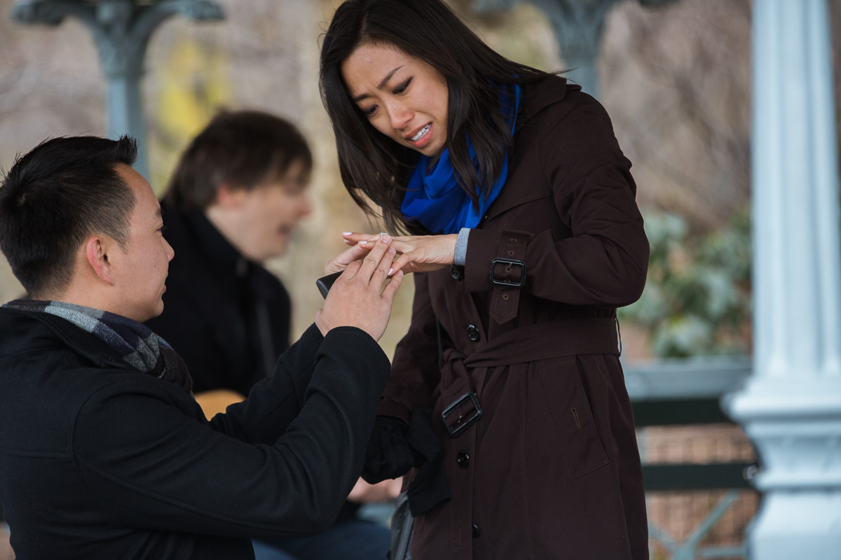 Photo 7 Surprise Proposal at Ladies Pavilion in Central Park | VladLeto