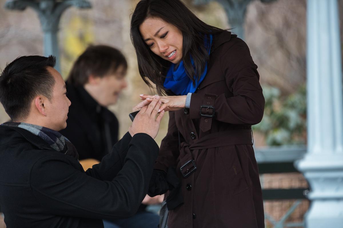 Photo 11 Surprise Proposal at Ladies Pavilion in Central Park | VladLeto
