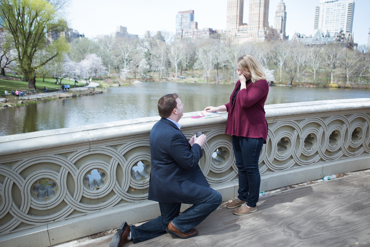 Photo Bow Bridge marriage proposal 2 | VladLeto