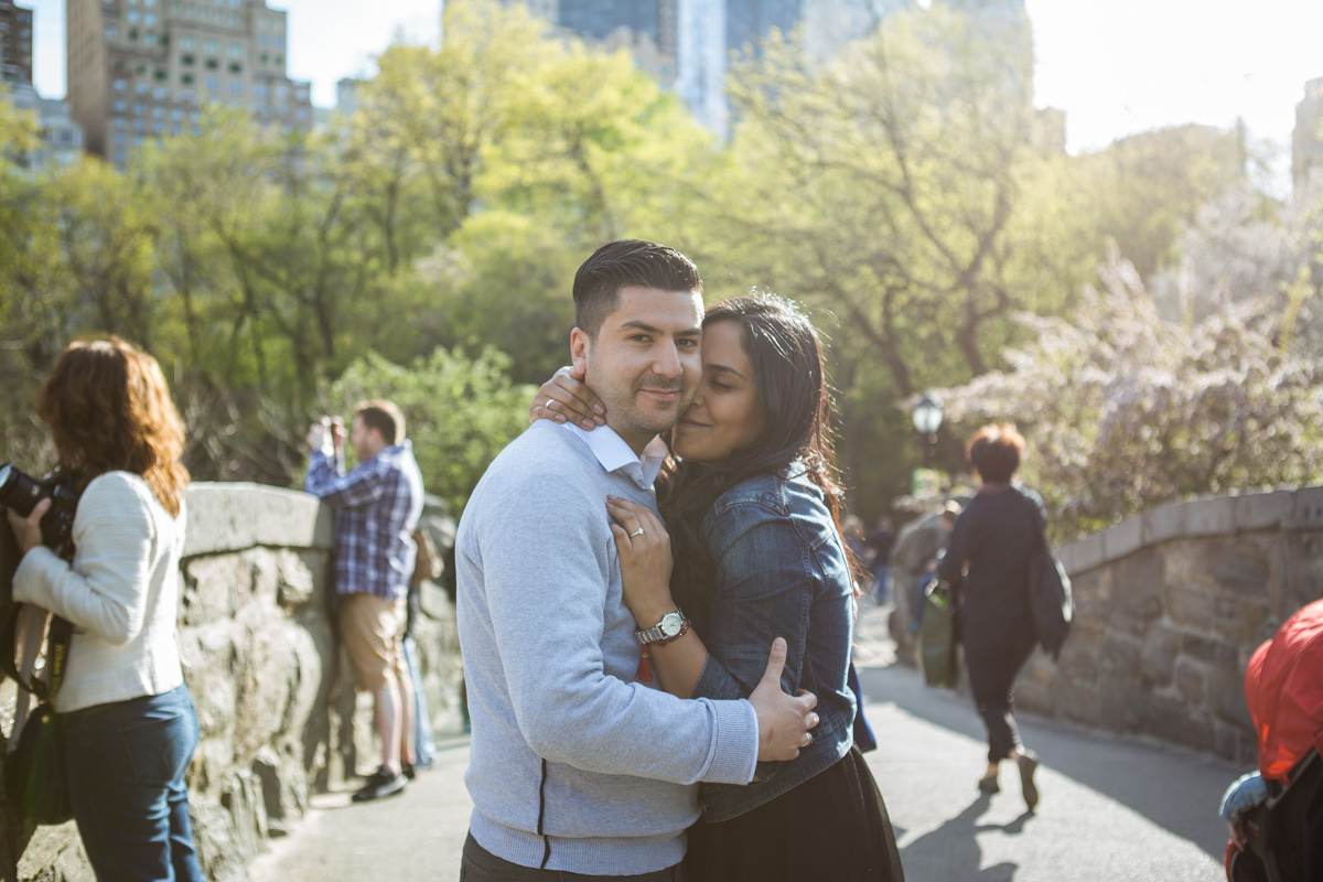 [Central Park the Rock proposal ]– photo[2]