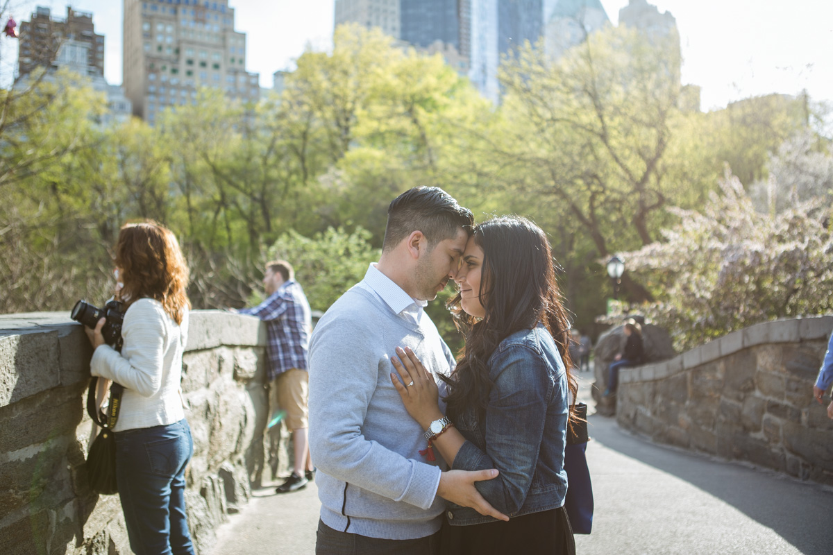 [Central Park the Rock proposal ]– photo[3]