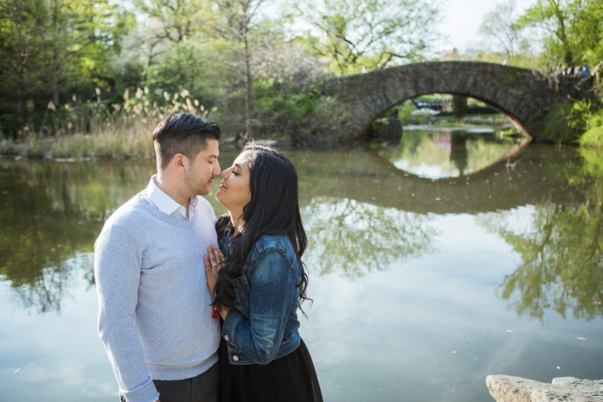 [Central Park the Rock proposal ]– photo[4]