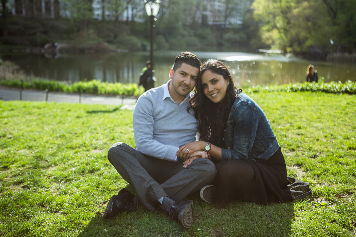 [Central Park the Rock proposal ]– photo[7]