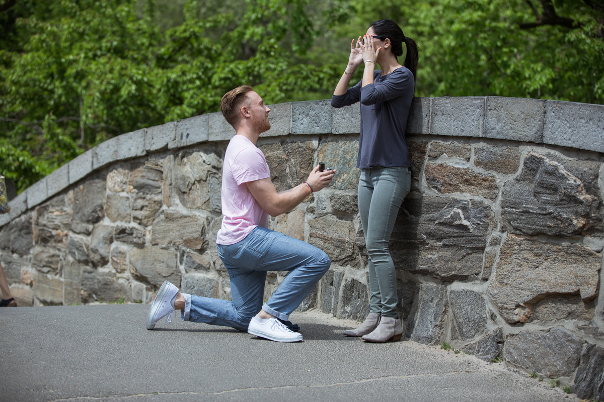 Photo 2 Gapstow bridge wedding proposal | VladLeto