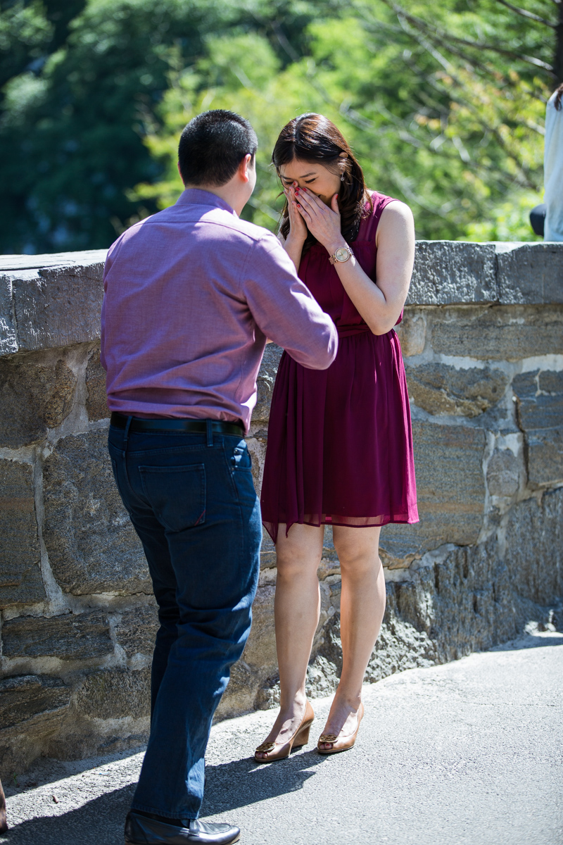 [Gapstow bridge marriage proposal]– photo[2]