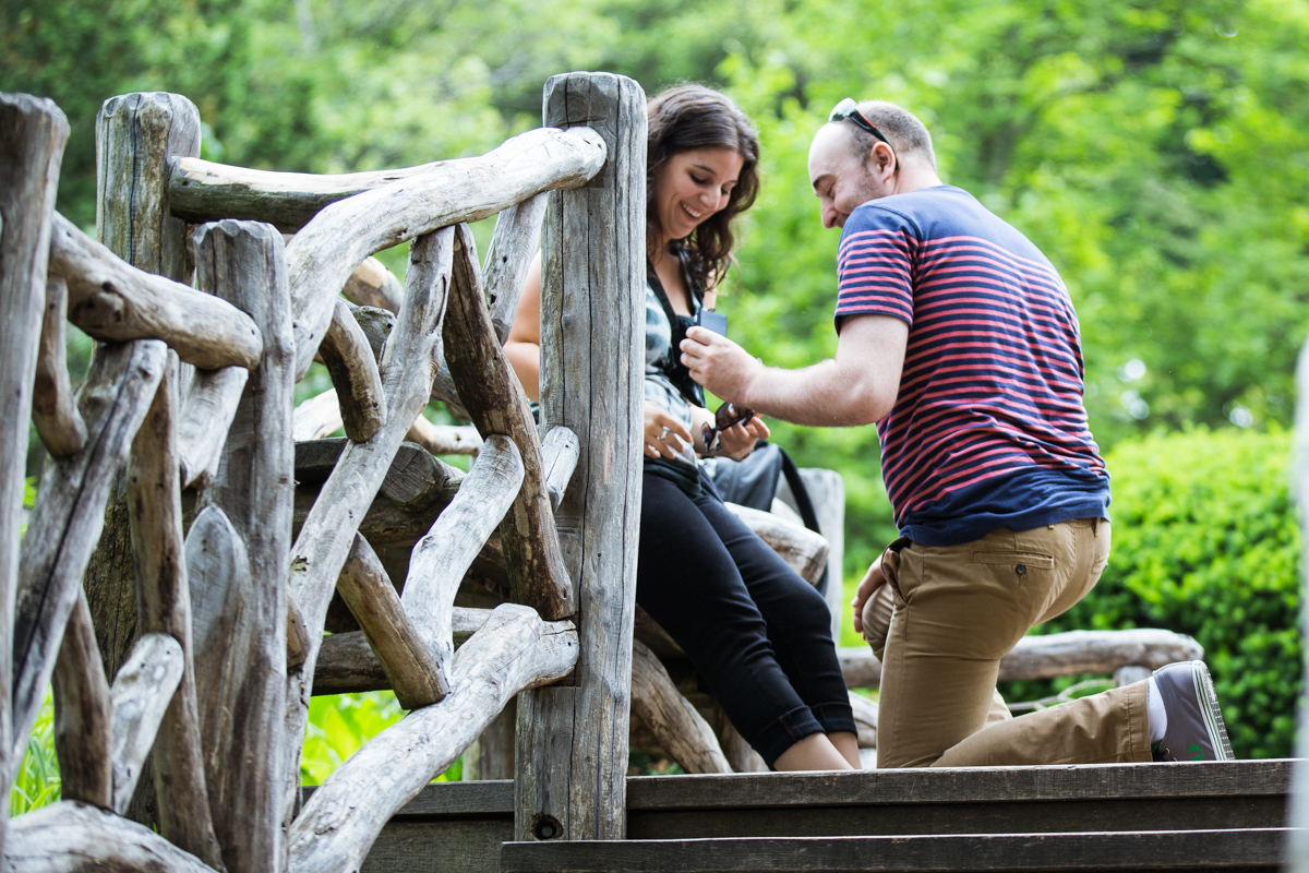 Photo Marriage Proposal at Shakespeare Garden in Central park | VladLeto