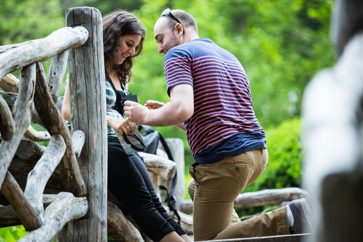 Photo 2 Marriage Proposal at Shakespeare Garden in Central park | VladLeto