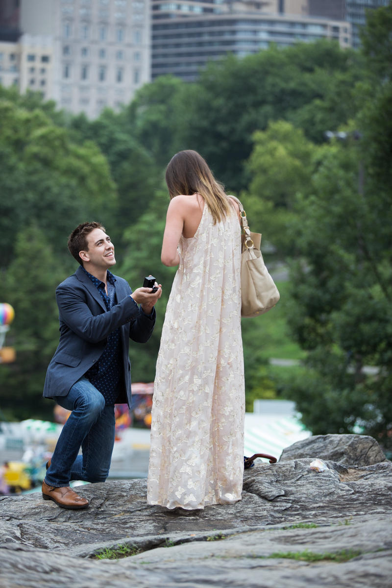 [Marriage Proposal on the Rock in Central Park]– photo[1]