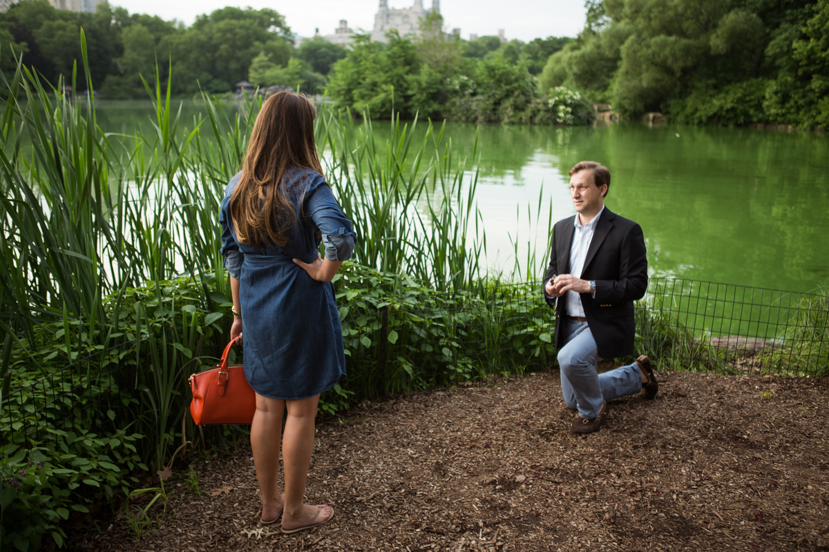 Photo Central park wedding proposal by the Lake | VladLeto