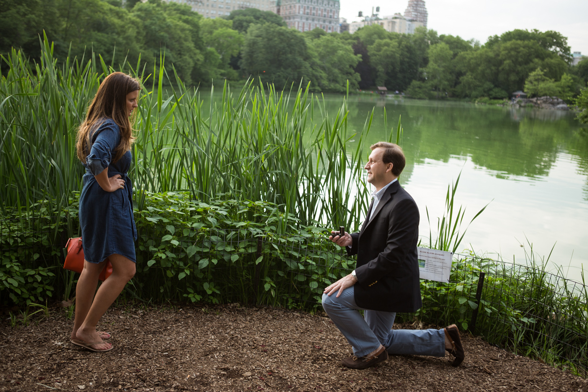 Photo 3 Central park wedding proposal by the Lake | VladLeto