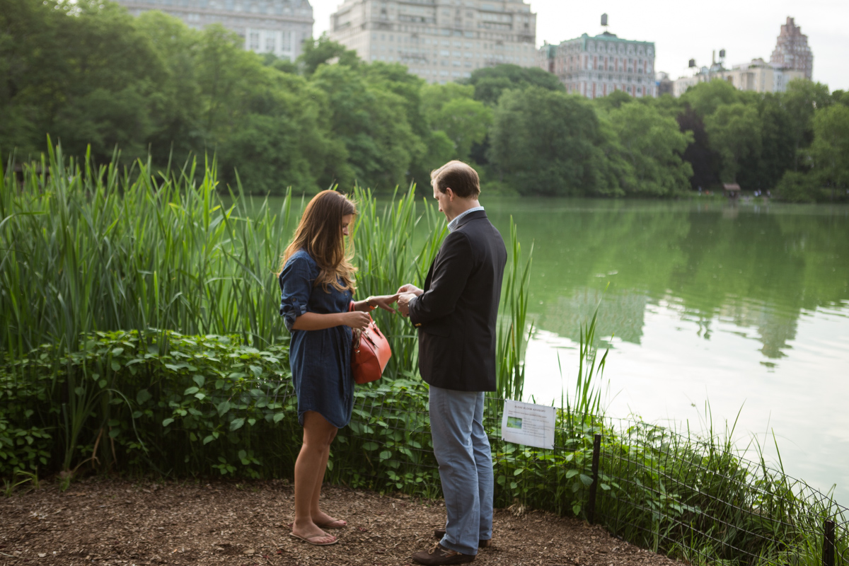 Photo 7 Central park wedding proposal by the Lake | VladLeto