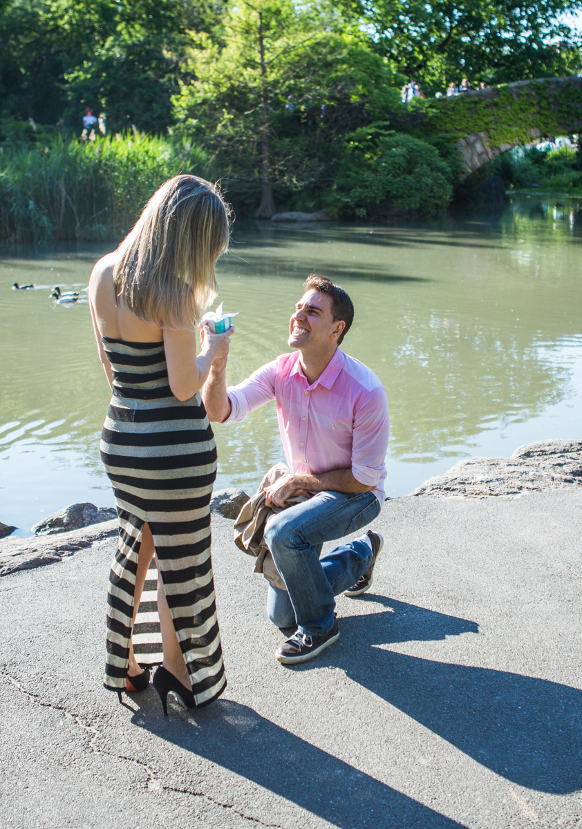 Photo 3 marriage proposal by Gapstow Bridge in Central Park | VladLeto