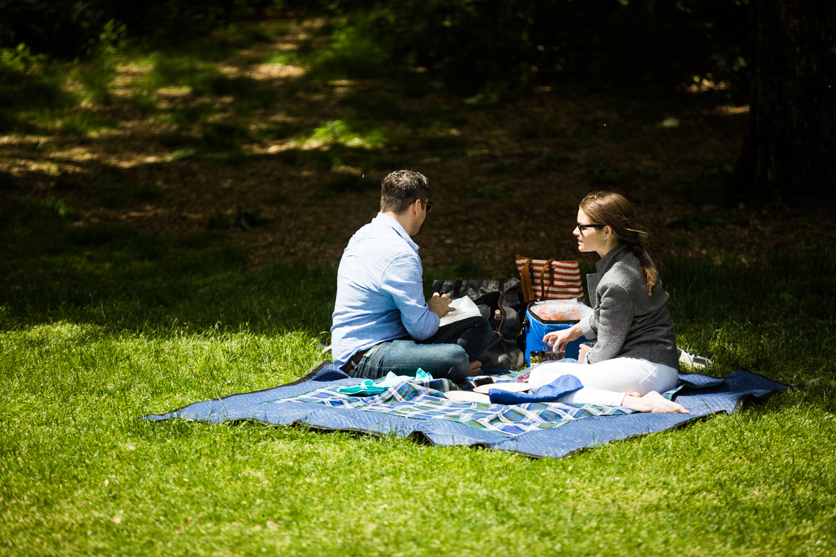 Photo 5 Strawberry Fields in Central Park wedding proposal | VladLeto