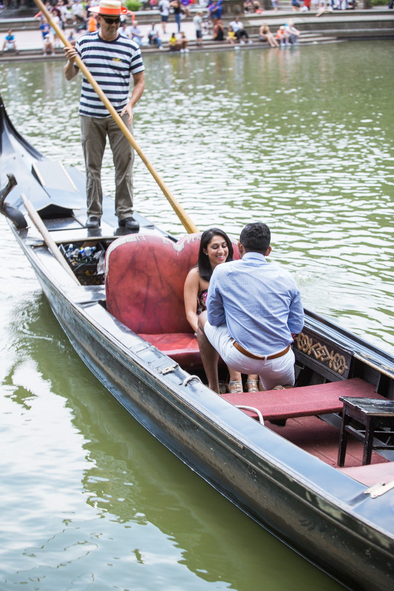 [New York Central Park Gondola Proposal]– photo[3]