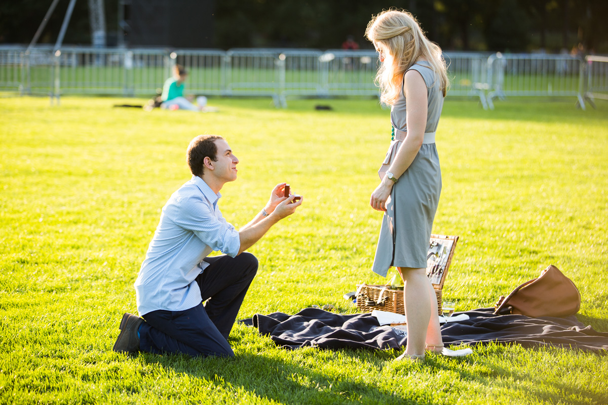 Photo 8 Central Park marriage proposal