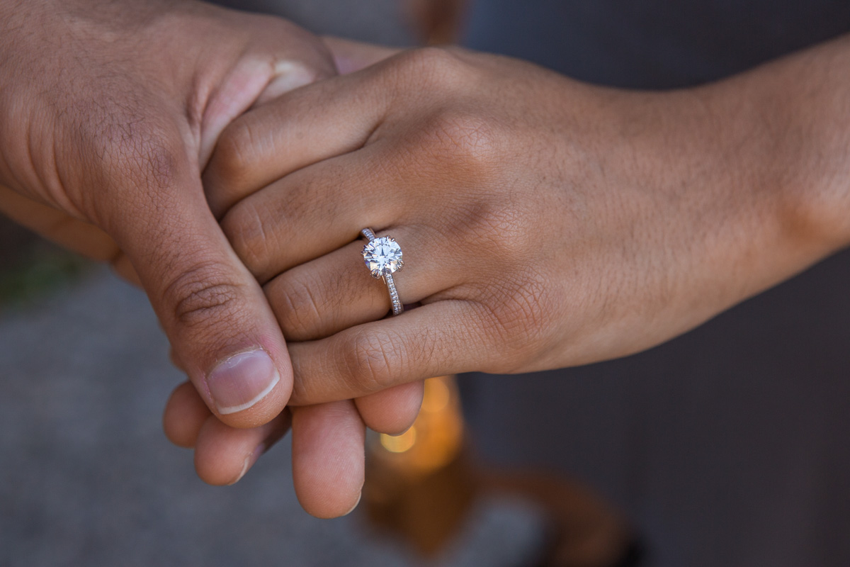 [High Line Marriage Proposal]– photo[7]